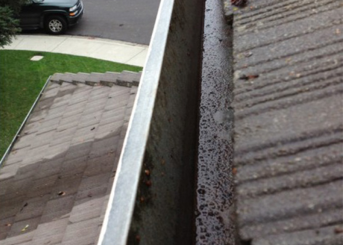 Gutter Cleaning Auckland Prices Cost Of Roof Gutter